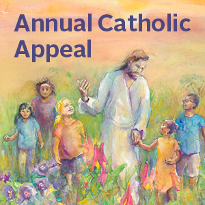 the annual catholic appeal The 2018 appeal is the heart of mercy in northern california your gift brings christ to others the 2018 annual catholic appeal keeps the jubilee year of mercy alive pope francis encourages us to be 'the heart of mercy' through a culture of encounter.